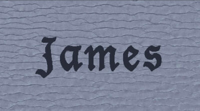 The Book of James